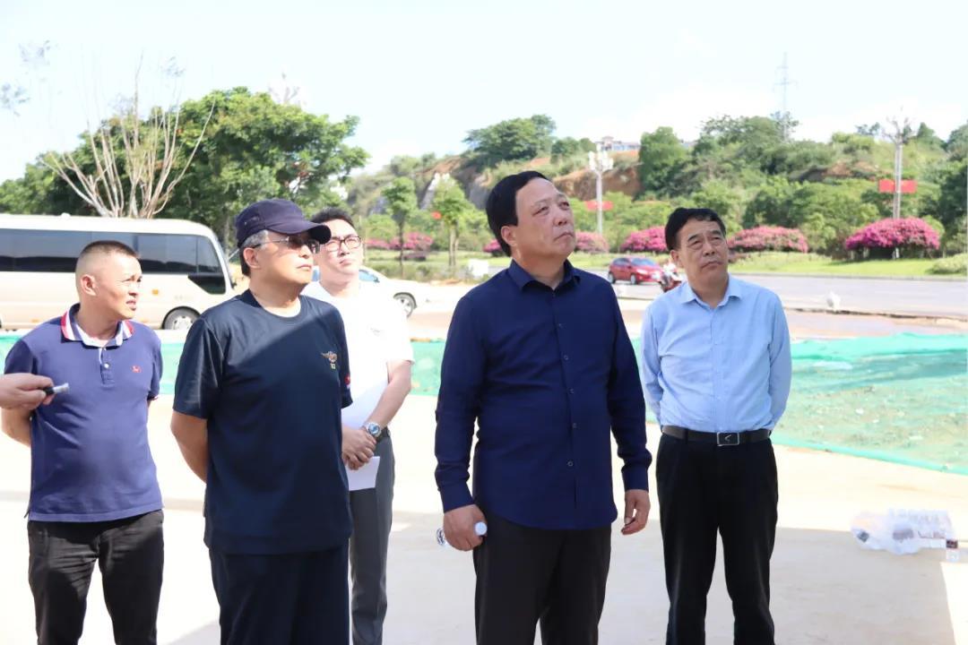 天士力控股集团董事局终身荣誉主席闫希军一行到兴义文化艺术旅游城参观考察